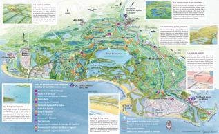 Camargue Karte.Die Camargue Fremdenverkehrsbüro Von Arles Frankreich